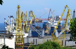 Sea port. Cranes working and loading containers Stock Images