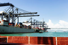 Sea port and cranes in the cargo Royalty Free Stock Photo