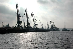 Sea port cranes Royalty Free Stock Image
