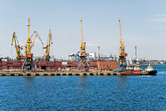 Sea port with loading cranes Stock Photography