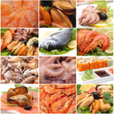 Sea products for all tastes Royalty Free Stock Photos