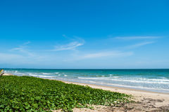 Sea in Rayong, Thailand . Royalty Free Stock Photography