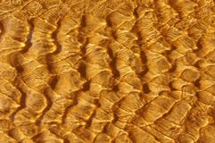 Sea ripple patterns over golden sand royalty free stock photography
