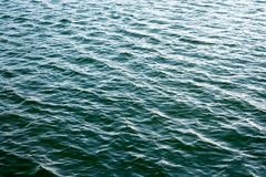 Sea ripples. Bright background. Dark green water. Shallow waves and sun glare on the water. Abstract Royalty Free Stock Photos
