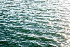 Sea ripples. Bright background. Dark green water. Shallow waves and sun glare on the water. Stock Images