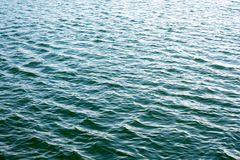 Sea ripples. Bright background. Dark green water. Shallow waves and sun glare on the water. Abstract Stock Image