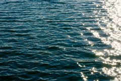 Sea ripples. Bright background. Dark green water. Shallow waves and sun glare on the water. Abstract Stock Photo