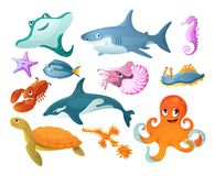 Sea and river underwater animals. Different sea animals fish. Of seafood collection seahorse turtle ramp shark, killer whale, lobster, octopus, starfish. Fish stock illustration