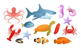 Sea and river underwater animals. Different sea animals fish. Of seafood collection seahorse turtle ramp shark, killer whale, lobster, octopus, starfish, fish royalty free illustration