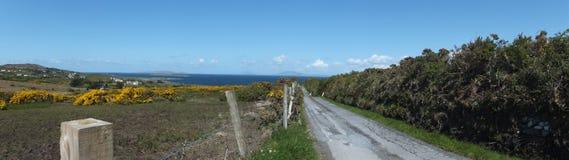 Sea Road. Irish coast taken in the Spring of 2012 Stock Image