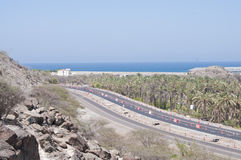 Sea, Road and Palm Trees on Desert Royalty Free Stock Photography