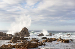 Sea rock is breaking powerful wave Stock Image