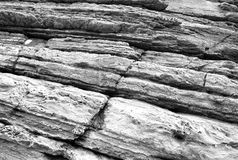 Sea rock cliff texture. Black and white photo Royalty Free Stock Images