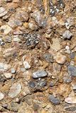 Sea rocks amazing background fine art in high quality prints products Canon 5DS - 50,6 Megapixels royalty free stock image