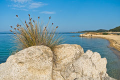 Sea rocks and a cave at sandy beach Stock Image