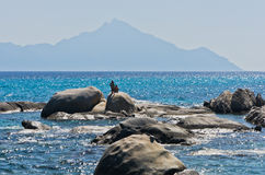 Sea rocks at greek coast with holy mountain Athos in background royalty free stock photos