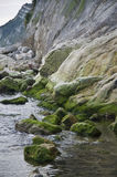 Sea rocks with green moss Royalty Free Stock Images