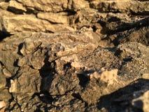 Sea rocks. Rocks by the sea - Island of Hvar Royalty Free Stock Photo