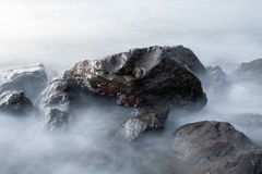 Sea rocks Royalty Free Stock Photos