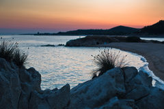 Sea rocks and mediterranean dry grass at sunset in Sithonia Royalty Free Stock Image