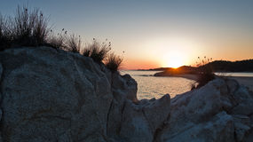 Sea rocks and mediterranean dry grass at sunset in Sithonia Royalty Free Stock Photos