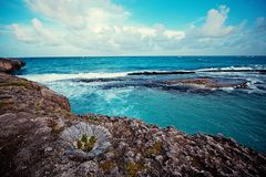 Sea, rocks, Reefs, splashes and rocks royalty free stock images