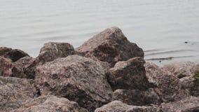 Sea rocks stones cliff landscape coast water travel stock footage