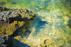 Sea rocks Stock Images