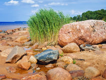 Sea rocky beach Stock Images