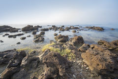 Sea and rocky coast in the morning Royalty Free Stock Photography