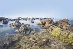Sea and rocky coast in the morning Royalty Free Stock Images