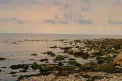 Sea, rocky shore, horizon, sky, clouds, summer Royalty Free Stock Photo