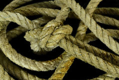 Sea rope knot on black Stock Photography