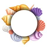 Sea round banner design, colorful seashells concept. Objects in white circle, color exotic cockleshell,  illustration. Website page and mobile app design Stock Image