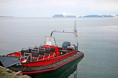 Sea safari stock images