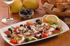 Sea salad dish Royalty Free Stock Photography