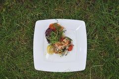 Sea salad on green grass Royalty Free Stock Image