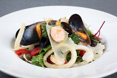 Sea salad with mussels and squids Royalty Free Stock Photos