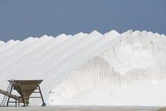 Sea Salt. From the salinas in Santa Pola Stock Image