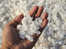 Sea salt Stock Photos
