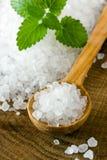 Sea salt. Healthy sea salt on wooden spoon closeup Stock Images
