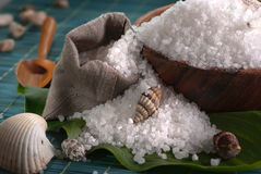 Sea salt. In the bowl with shells Royalty Free Stock Photography