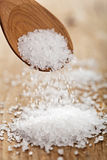 Sea salt Royalty Free Stock Photography