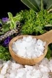 Sea Salt And Herbs Stock Photos