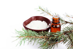 Sea salt with aromatic oil and  fir branch Stock Photography
