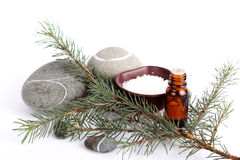 Sea salt with aromatic oil and fir branch Stock Image