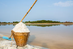 Sea salt in a basket Royalty Free Stock Images