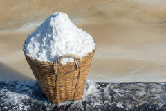 Sea salt in basket. With salt field background Royalty Free Stock Photography