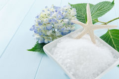 Sea Salt Bath Scrub Stock Photography