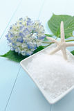 Sea Salt Bath Scrub Stock Image